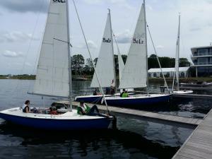 BeNeLux2019 regata 03 plaukimai 10 Gintaras Marijauskas