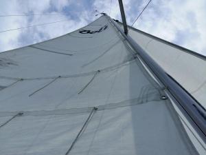 BeNeLux2019 regata 03 plaukimai 08a Gintaras Marijauskas